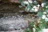 Schwarze Basaltkügelchen